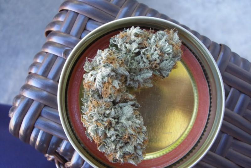 platinum-kush-weed-4
