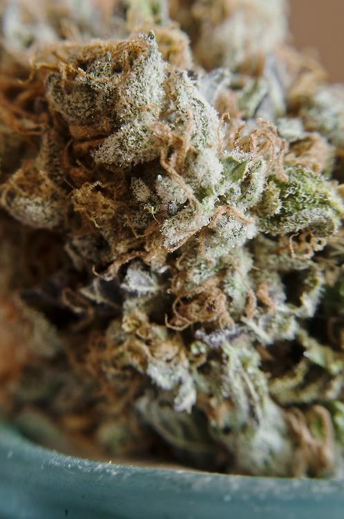 kryptonite-og-weed