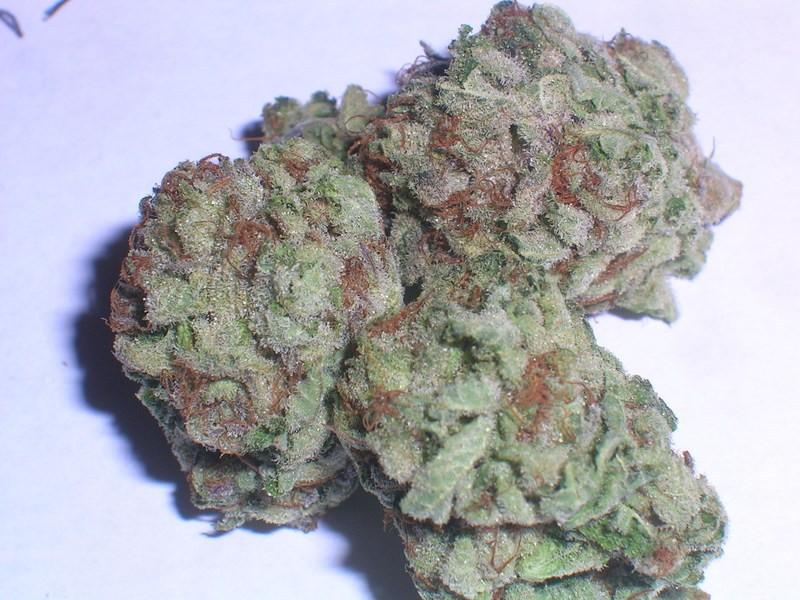 skywalker-og-weed-4
