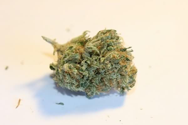 presidential-og-weed-4