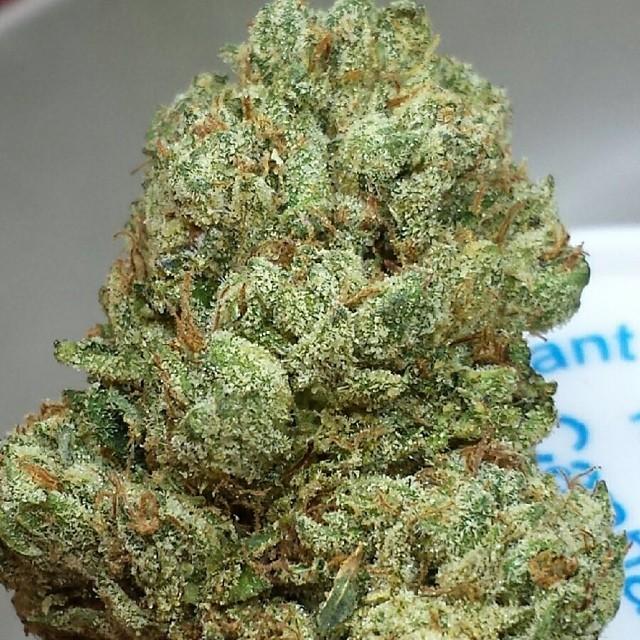 superman-og-weed-1