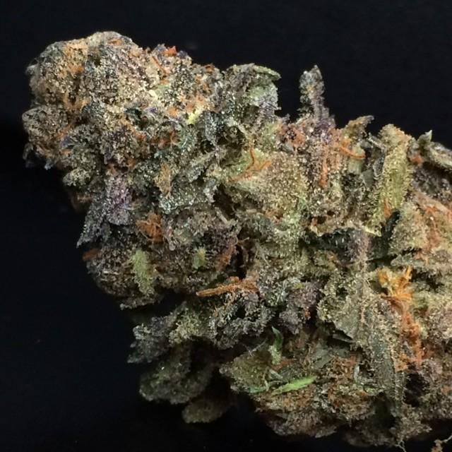 cherry-pie-weed