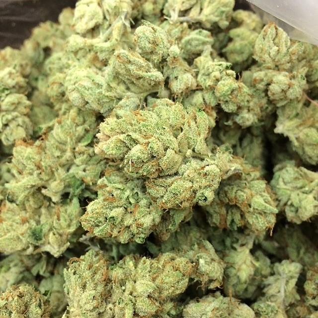 larry-og-weed-2
