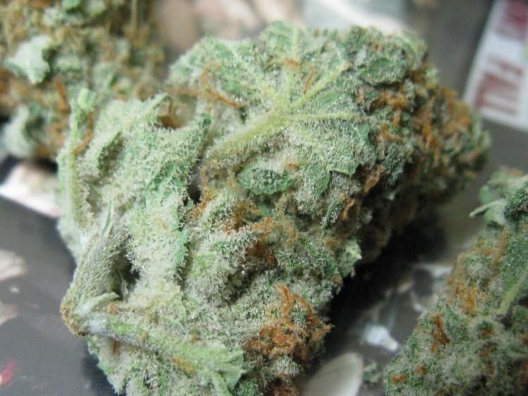 mr-nice-weed-2