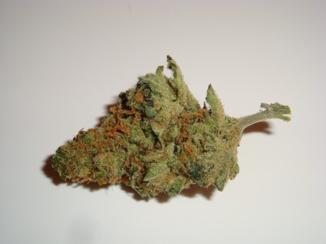 super-lemon-haze-weed-3