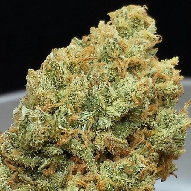 xj13-weed-1