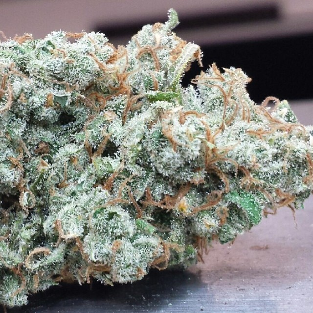 xj-13-hybrid-weed