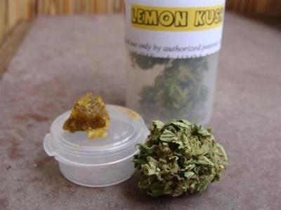 lemon-kush-weed-3