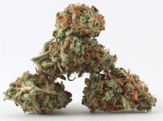 lemon-kush-weed-5