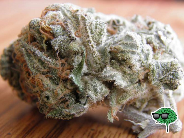 white-widow-2