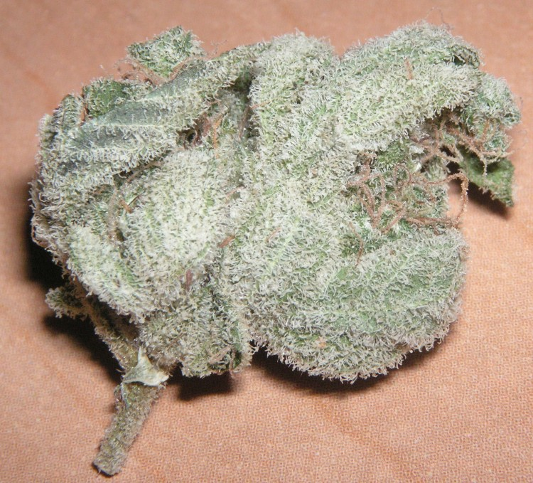 white-widow-1