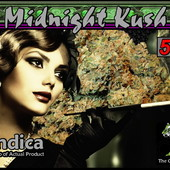 Midnight Kush