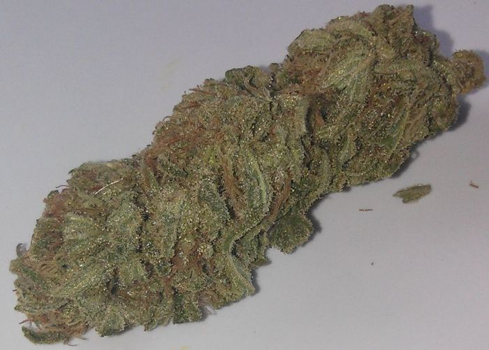 berry-white-weed-3