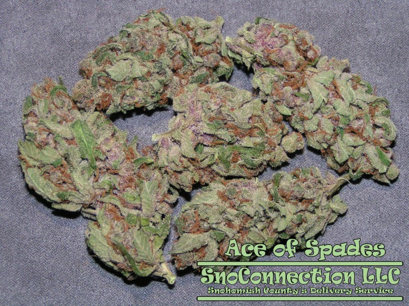 ace of spades cannabis reviews