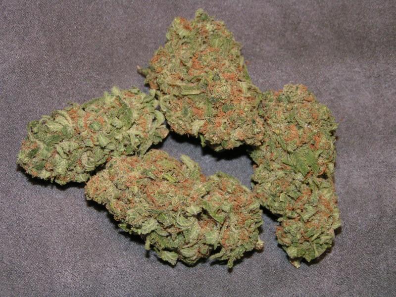 pinapple-kush-weed-2