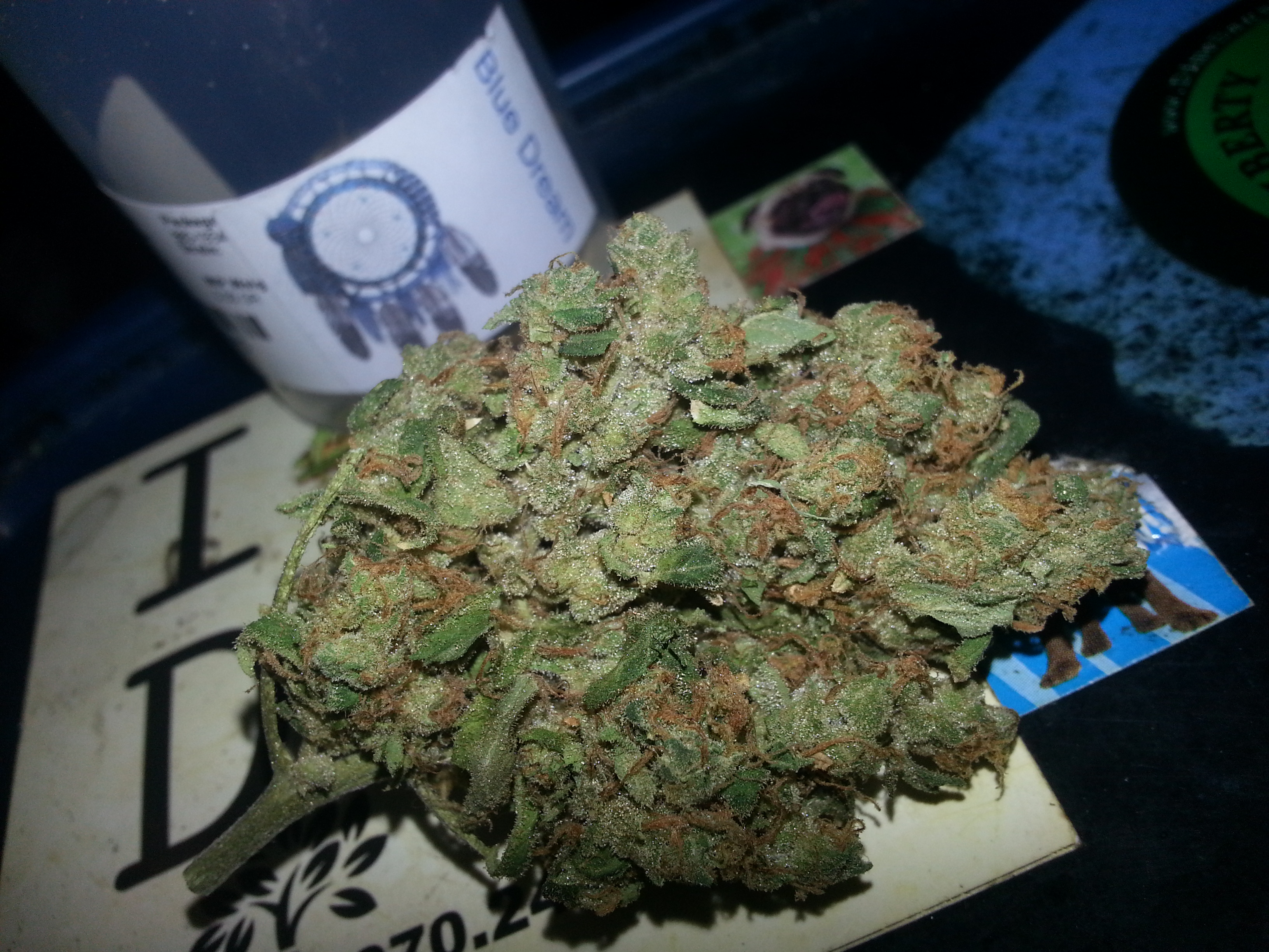 blue-dream-weed