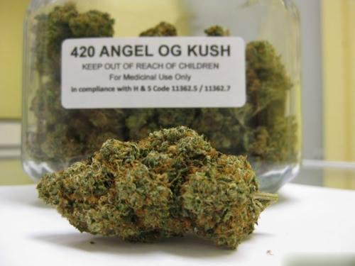 angel-og-kush-weed