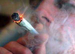 5-lies-regarding-cannabis