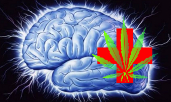 mmj-for-patients-with-epilepsy