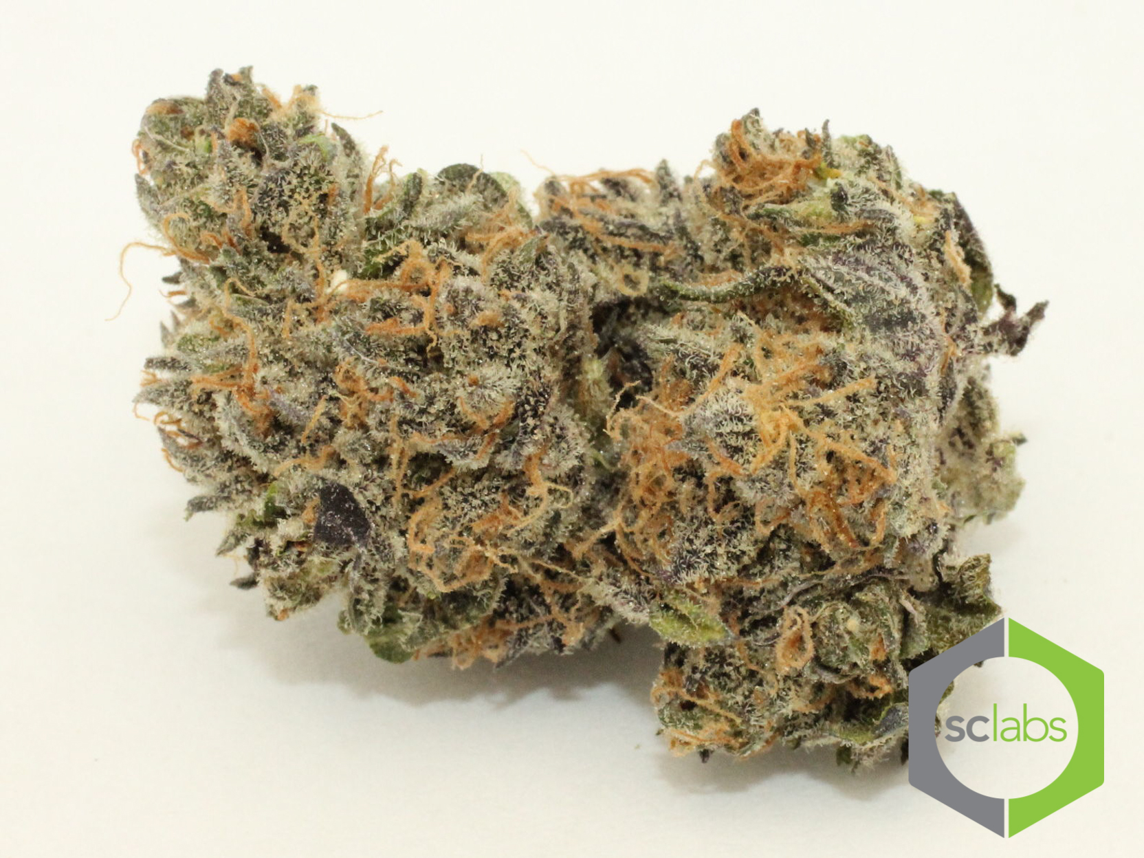 purple-zombie-cannabis