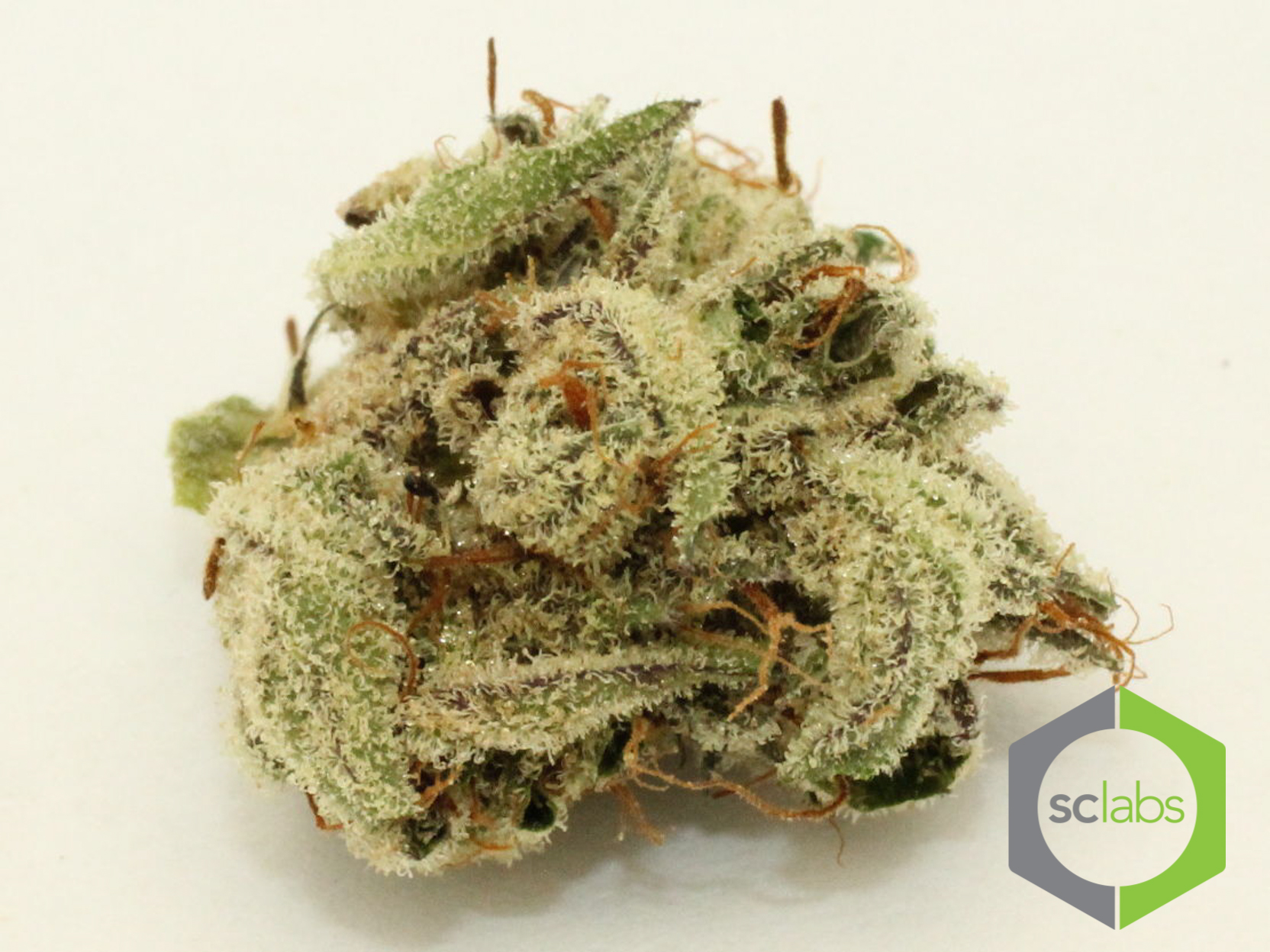 u2-og-weed-ocpc