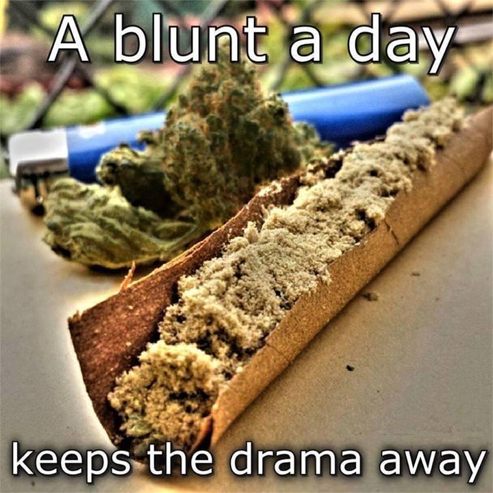 smoke-weed-daily