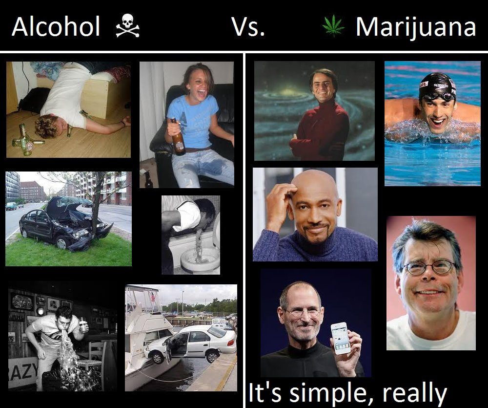 alcohol-more-harmful-than-cannabis
