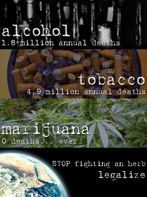cannabis vs tobacco essay Alcohol vs marijuana vs tobacco posted on april 20, 2015 in news by zachary searles in recent years, marijuana has become the most widely used illegal drug in the.