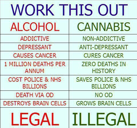 Alcohol Is More Than Twice As Harmful As Cannabis   News Marijuana THC ...