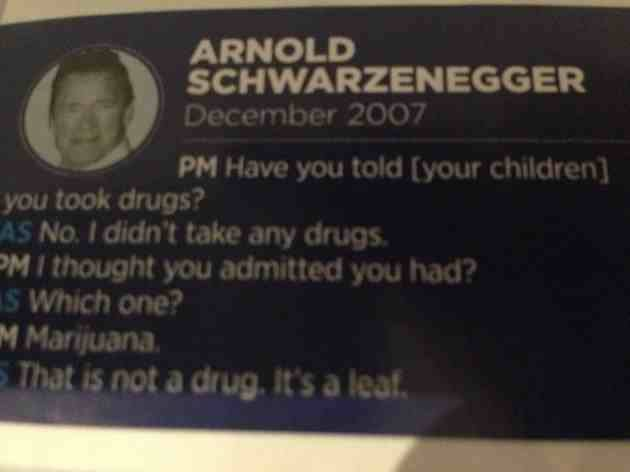 arnold-schwarzenegger-and-weed
