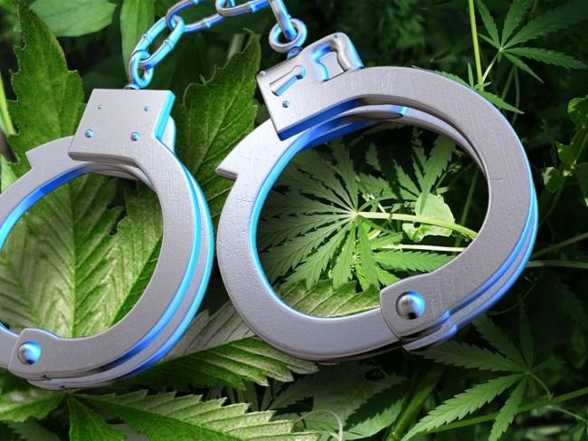 cannabis-grow-op