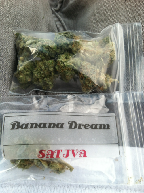 banana-dream-weed