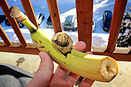 banana-pipe