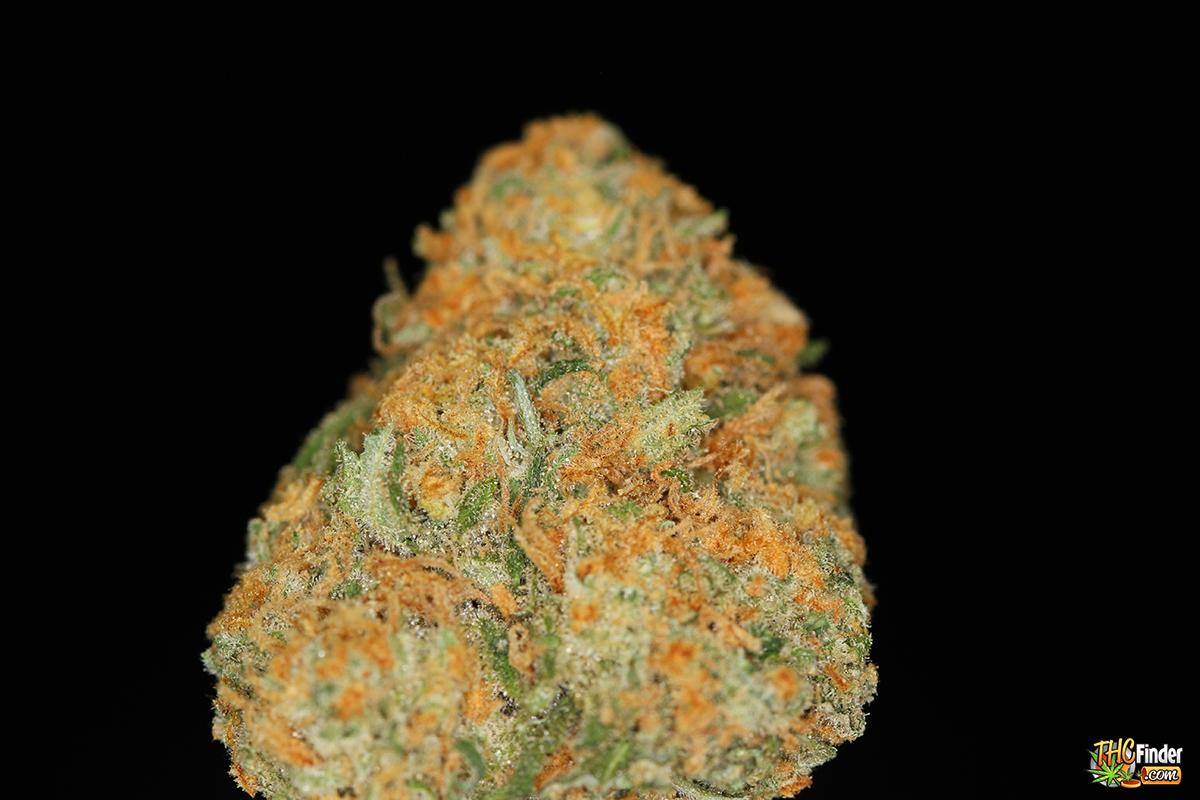 bluecrack-weed-cannabis