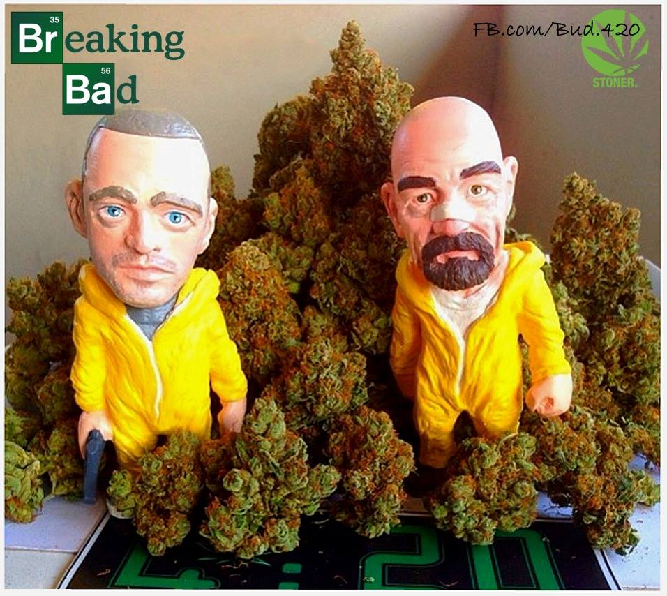 breaking-buds-breaking-bad