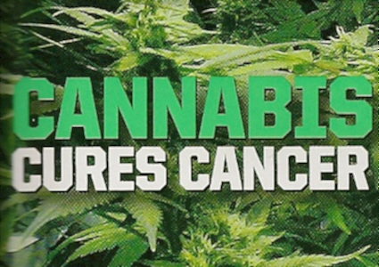 http://www.thcfinder.com/uploads/files/cannabis-cure-skin-cancer.jpg