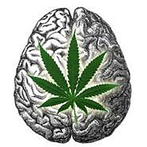 cannabis-may-help-improv-memory