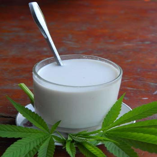 cannabis-milk-recipe