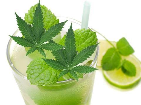 cannabis-mojito-recipe