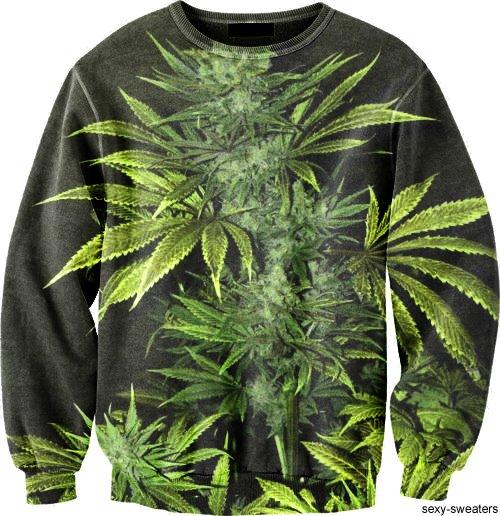 Cannabis sweater | Fun Marijuana Blog | THC Finder - Dispensaries