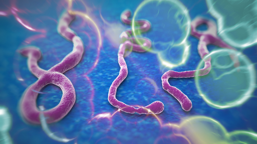 cannabis-vs-the-ebola-virus