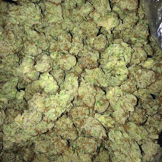 cherry-pie-og-weed