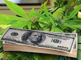 co-investors-pushing-millions-into-cannabis