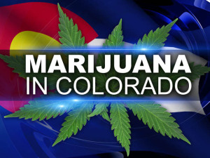 colorado-mmj-industry