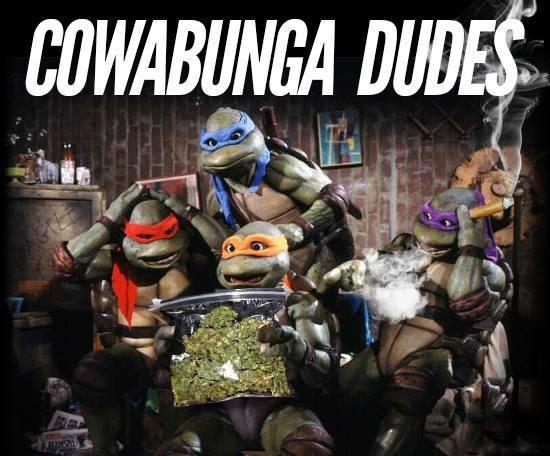 ninja-turtles-stoners
