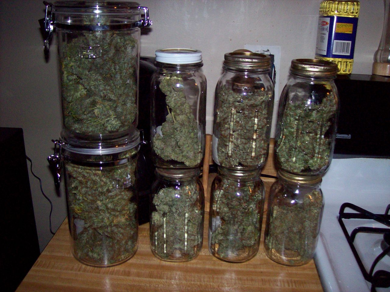 curing-your-buds