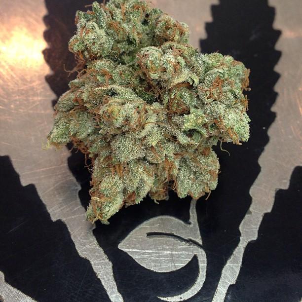 deathstar-og-weed