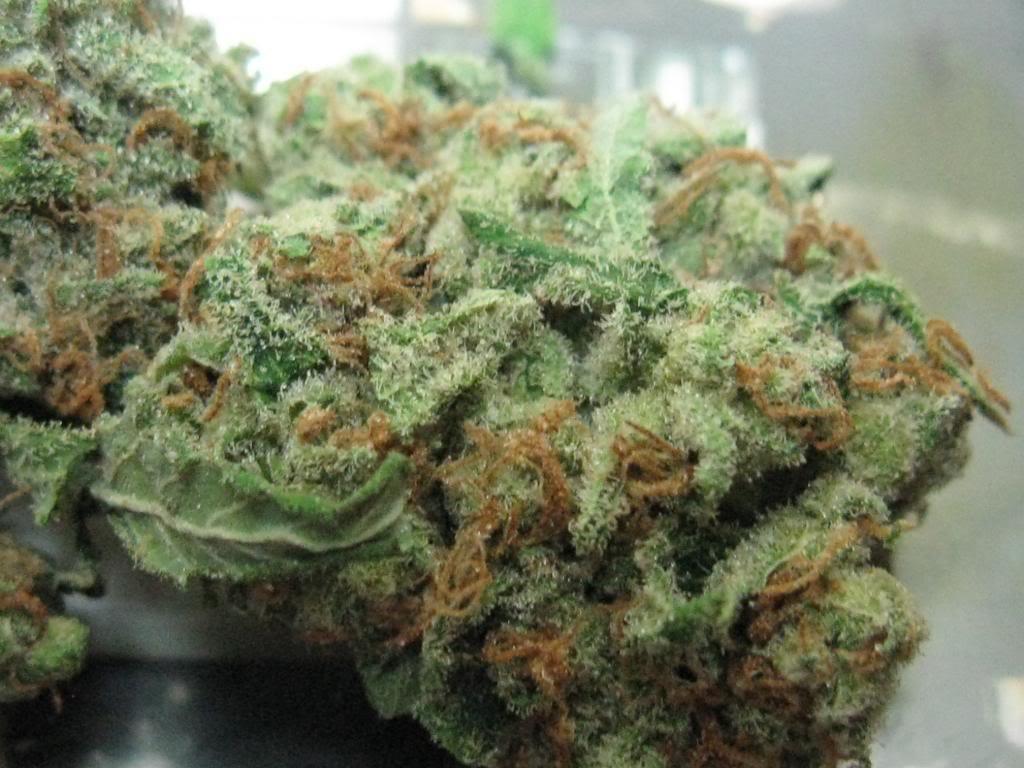 fat-albert-weed-2