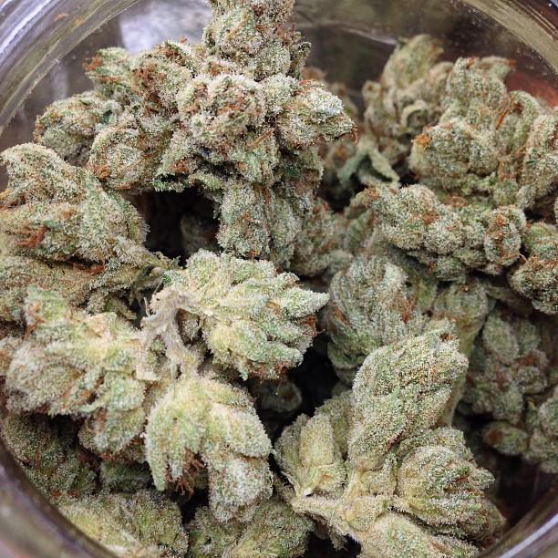 Fire-og-weed
