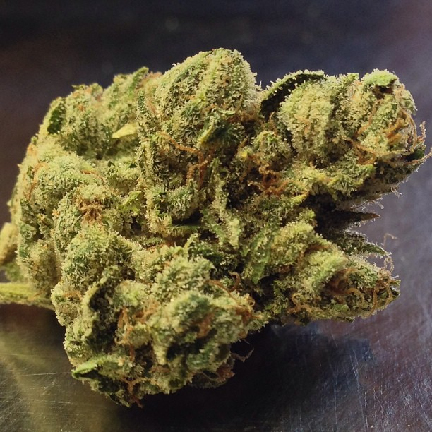 marijuana in the criminal justice system Cause and effect essay about legalization of marijuana marijuana is that the criminal justice will criminal justice system to focus on.